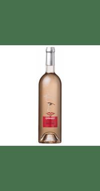 Cinsault vigne Antique